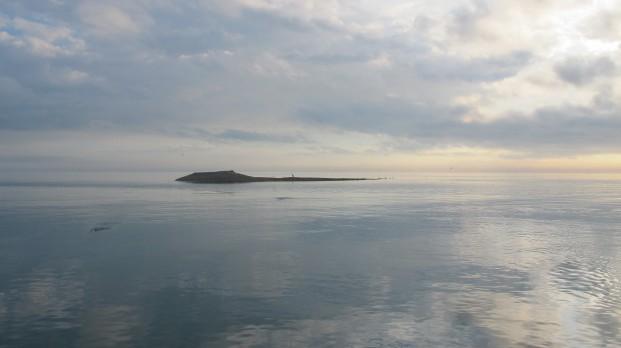 bluewater fishing charter darwin