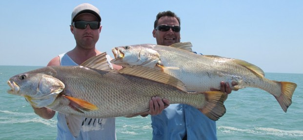 fishing charters the top end