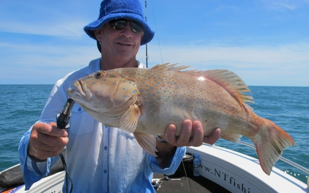 darwin fishing charters day trip
