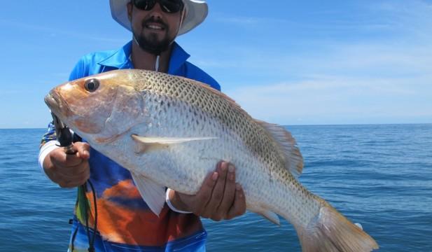 fishing charters darwin day trip build up fishing