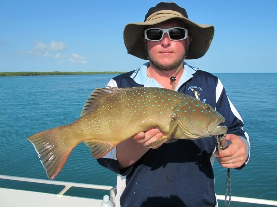 bluewater fishing charter top end vernon islnad leaders creek