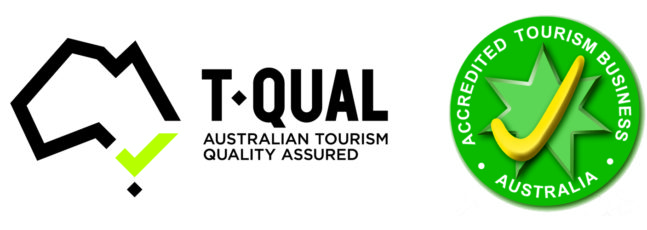 TQUAL_ATAP-Logo-_Horizontal-NT